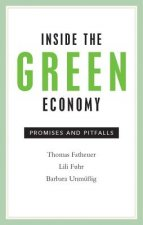 Inside the Green Economy: Promises and Pitfalls