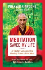 Meditation Saved My Life: A Tibetan Lama and the Healing Power of the Mind