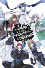 Is It Wrong to Try to Pick Up Girls in a Dungeon?, Vol. 8