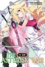 Asterisk War, Vol. 3 (light novel)