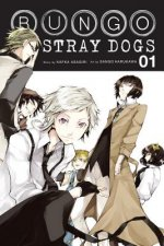 Bungo Stray Dogs, Vol. 01