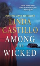 Among the Wicked: A Kate Burkholder Novel