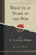 What Is at Stake in the War (Classic Reprint)