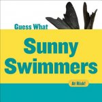 Sunny Swimmers: Monk Seal