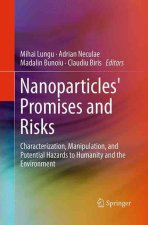 Nanoparticles' Promises and Risks