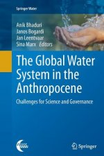 The Global Water System in the Anthropocene