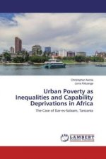 Urban Poverty as Inequalities and Capability Deprivations in Africa