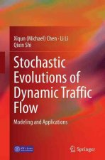 Stochastic Evolutions of Dynamic Traffic Flow