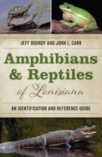AMPHIBIANS & REPTILES OF LOUIS