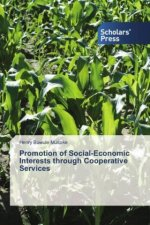 Promotion of Social-Economic Interests through Cooperative Services