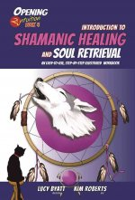 INTRO TO SHAMANIC HEALING & SO