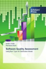 Software Quality Assessment