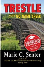 Trestle Over No Name Creek (Classroom Edition)