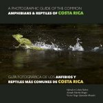 A photographic guide of the common ammphibians & reptiles of Costa Roca / Guía fotográfica de los anfibios y reptiles más comunes de Costa Rica
