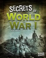 TOP SECRET FILES SECRETS OF WW