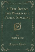 A Trip Round the World in a Flying Machine (Classic Reprint)