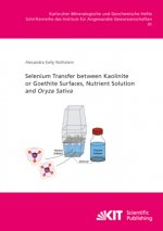 Selenium Transfer between Kaolinite or Goethite Surfaces, Nutrient Solution and Oryza Sativa