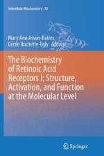 The Biochemistry of Retinoic Acid Receptors I: Structure, Activation, and Function at the Molecular Level