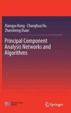 Principal and Minor Component Analysis Neural Networks to Principal Component Analysis Networks and Algorithms
