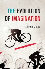 EVOLUTION OF IMAGINATION