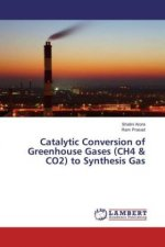 Catalytic Conversion of Greenhouse Gases (CH4 & CO2) to Synthesis Gas