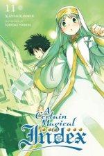 Certain Magical Index, Vol. 11 (light novel)