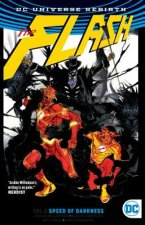 FLASH VOL 2 (REBIRTH)
