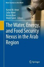 The Water, Energy, and Food Security Nexus in the Arab Region