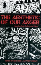 AESTHETIC OF OUR ANGER