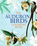 AUDUBON BIRDS COLOR BK