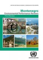 Environmental Performance Review