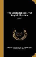 CAMBRIDGE HIST OF ENGLISH LITE