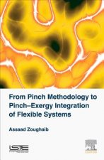 From Pinch Methodology to Energy Integration of Flexible Systems