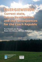 Energiewende: current state, future development and the consequences for the Cze