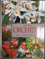 Orchideje Rady Péče Pěstování