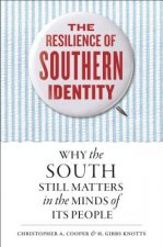 RESILIENCE OF SOUTHERN IDENTIT