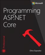 PROGRAMMING ASPNET CORE