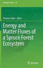 Energy and Matter Fluxes of a Spruce Forest Ecosystem