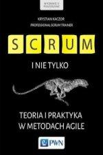 Scrum i nie tylko. Teoria i praktyka w metodach Agile