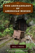 ARCHAEOLOGY OF AMER MINING
