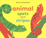 Animal Spots and Stripes
