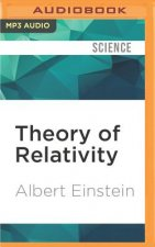 THEORY OF RELATIVITY         M
