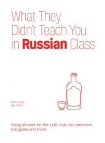 What They Didn't Teach You in Russian Class