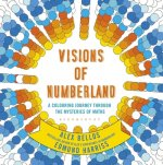 Visions of Numberland