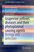 Grapevine Yellows Diseases and Their Phytoplasmal Causing Agents