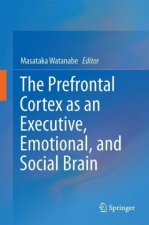 Prefrontal Cortex as an Executive, Emotional, and Social Brain