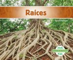 Raíces/ Roots