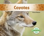 Coyotes/ Coyotes