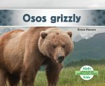 Osos grizzly/ Grizzly Bears