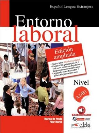Entorno laboral učebnice A1/B1 + CD